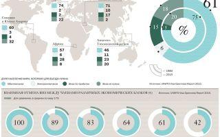 Статистика туристов: как количество отдыхающих влияет на экономику