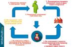 Как заработать в интернете без вложений: обзор популярных способов