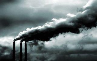 Статистика загрязнения воздуха: виды и источники засорения
