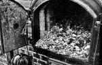 Статистика холокоста: данные о массовом уничтожении евреев
