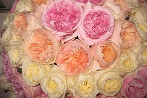 Цветочный бизнес: как предпринимателю открыть свой магазин