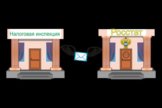 Статистика ИП: порядок регистрации, принцип работы бизнесмена