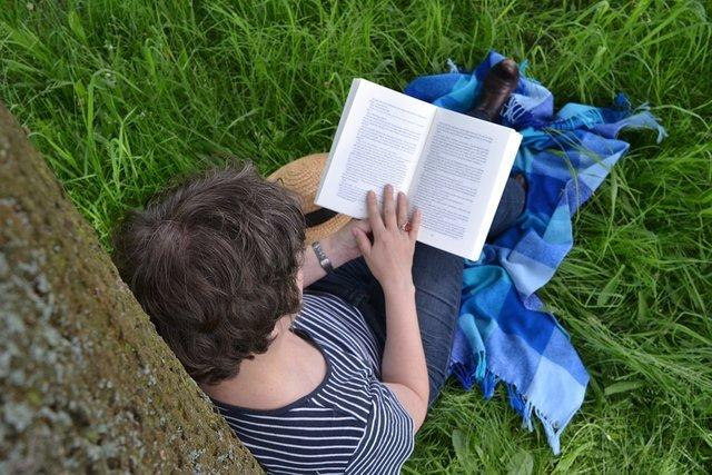 Статистика чтения книг: чем обычно интересуются жители страны