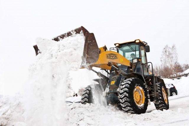 Бизнес зимой: подробное описание различных идей