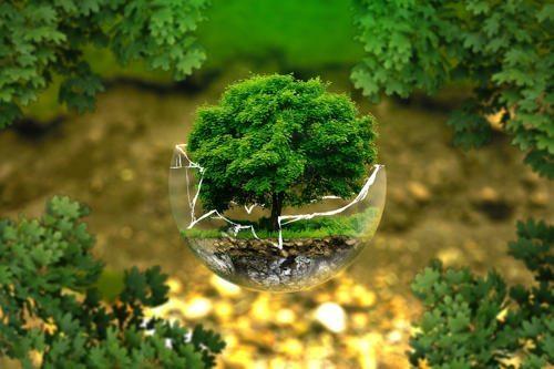 Статистика ресурсов: оценка водного, земельного и лесного массива