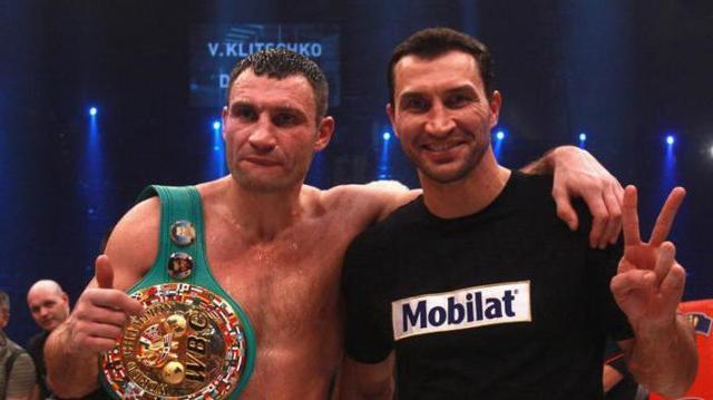 Статистика боев Кличко: карьера братьев чемпионов в боксе