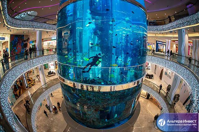 Изготовление аквариумов: как наладить производство в своем городе