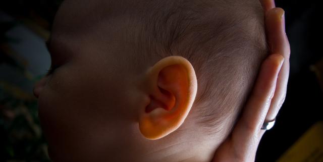 Статистика новорожденных: количество оформленных младенцев