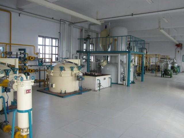 Производство подсолнечного масла: подробный бизнес-план