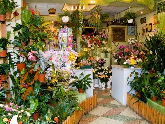 Бизнес на продаже цветов: начальный капитал для выгодной торговли