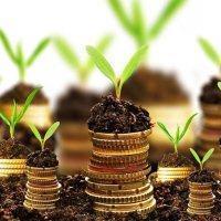 Кредит под залог земельного участка: условия получения денег
