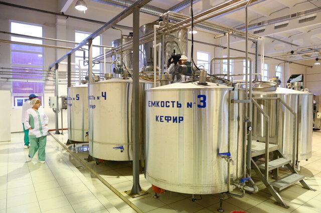 Мороженый бизнес: организация прибыльного производства