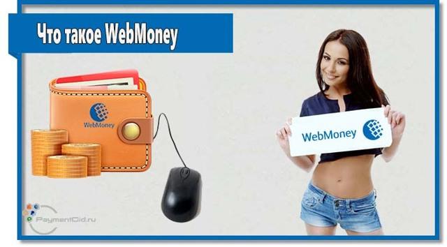 web money: плюсы и минусы международной платежной системы