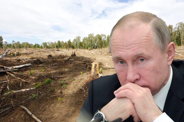 Статистика взяточничества в России: коррупция среди чиновников