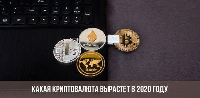 Криптовалюты 2020 года: основные правила покупки новинок