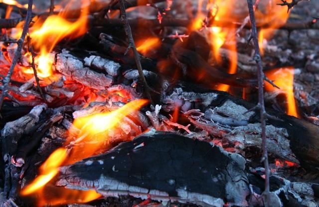 Статистика кремации: что практичнее погребение или сжигание тел
