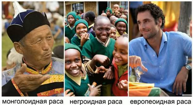 Статистика народов: количество и особенности рас