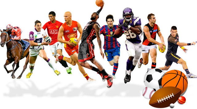 Статистика спорта: популярные виды и их роль в жизни человека