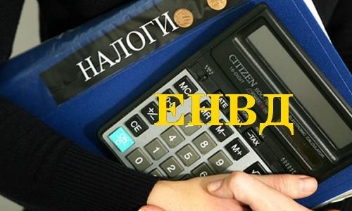 ИП на ЕНВД: порядок расчета, отчетности и уплаты налога